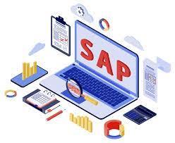 sap sap consulting